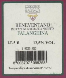 FALANGHINA 'Bag in Box' IGP 5 Liter - bianco